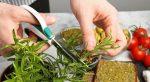 Cómo afilar las tijeras de cocina